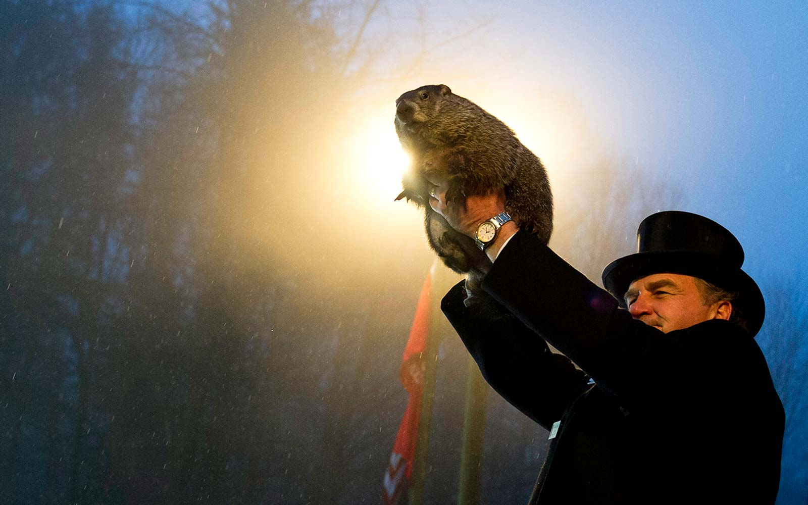 Punxsutawney Phil Groundhog Season Winter Prediction Pennsylvania