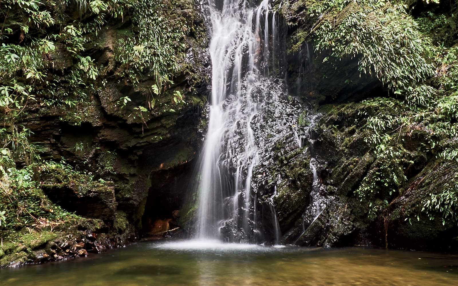 A waterfall in Yanbaru Forest, Okinawa, Japan