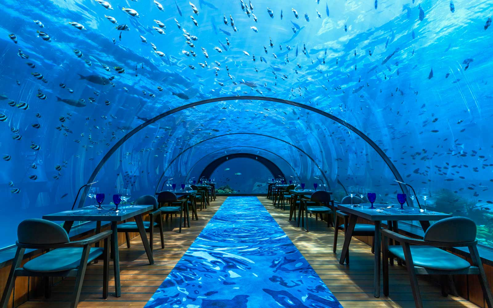 You Can Do Underwater Yoga Surrounded by Tropical Fish in the Maldives