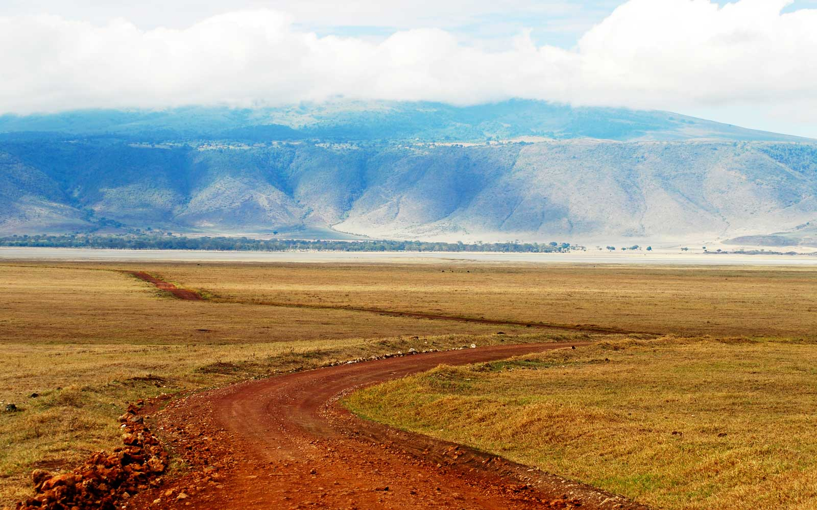 Landscape with winding road,  Ngorongoro Crater in Tanzania