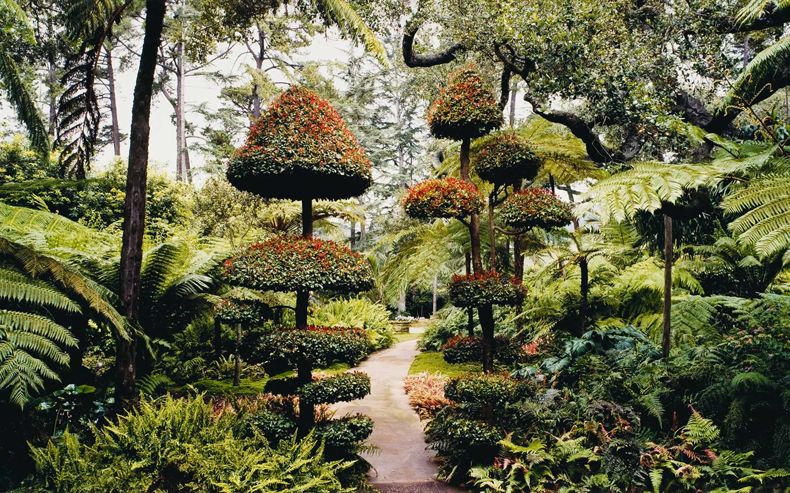 These 10 Photographs of Gorgeous Gardens Around the World Will Give You a Serious Case of Spring Fever