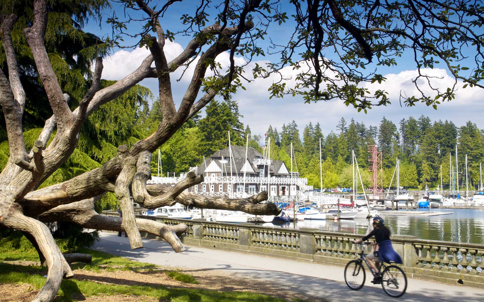 Riding a bike in Stanley Park, Vancouver