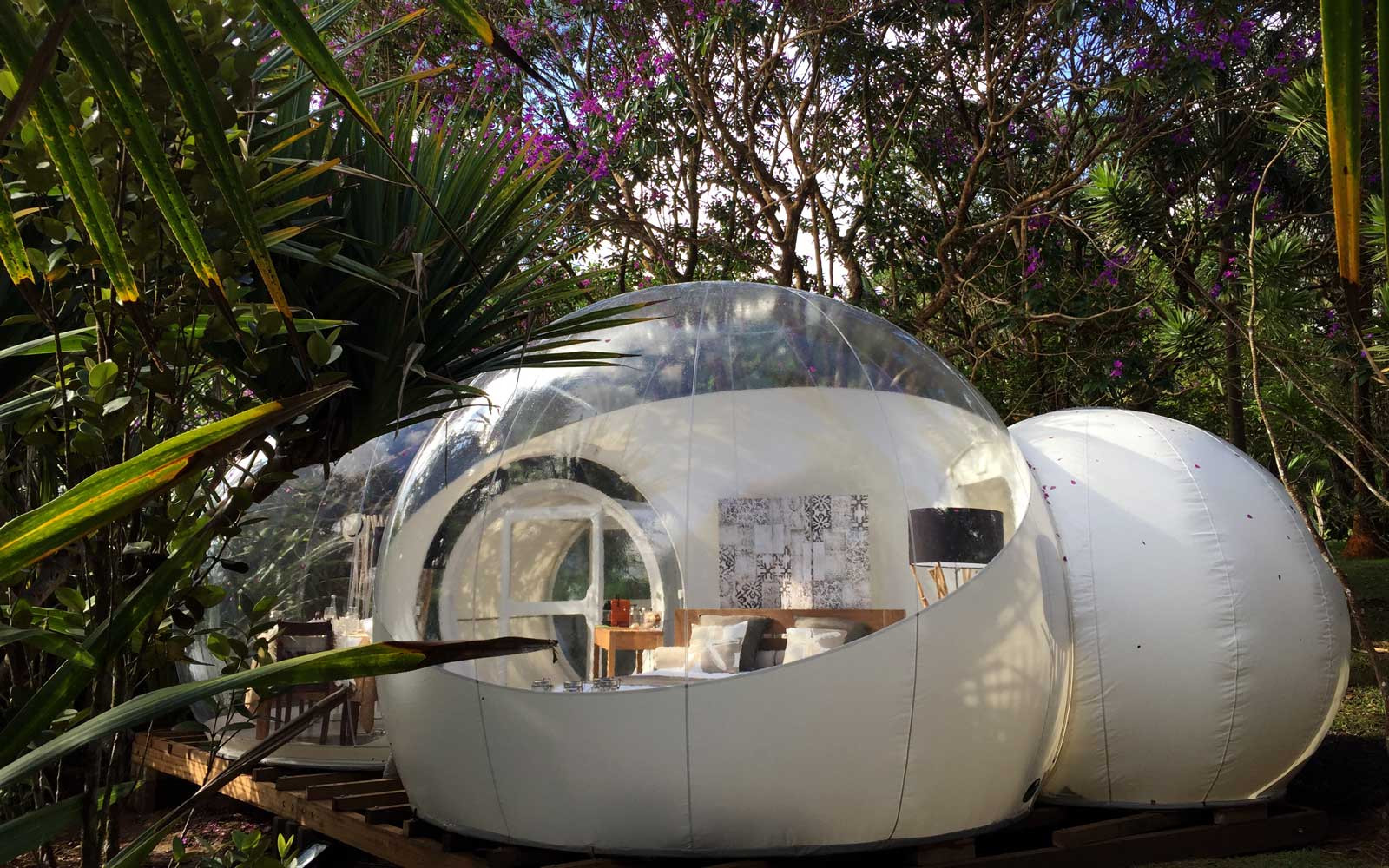 Luxury Stargazing From Bubble Rooms on Mauritius Island