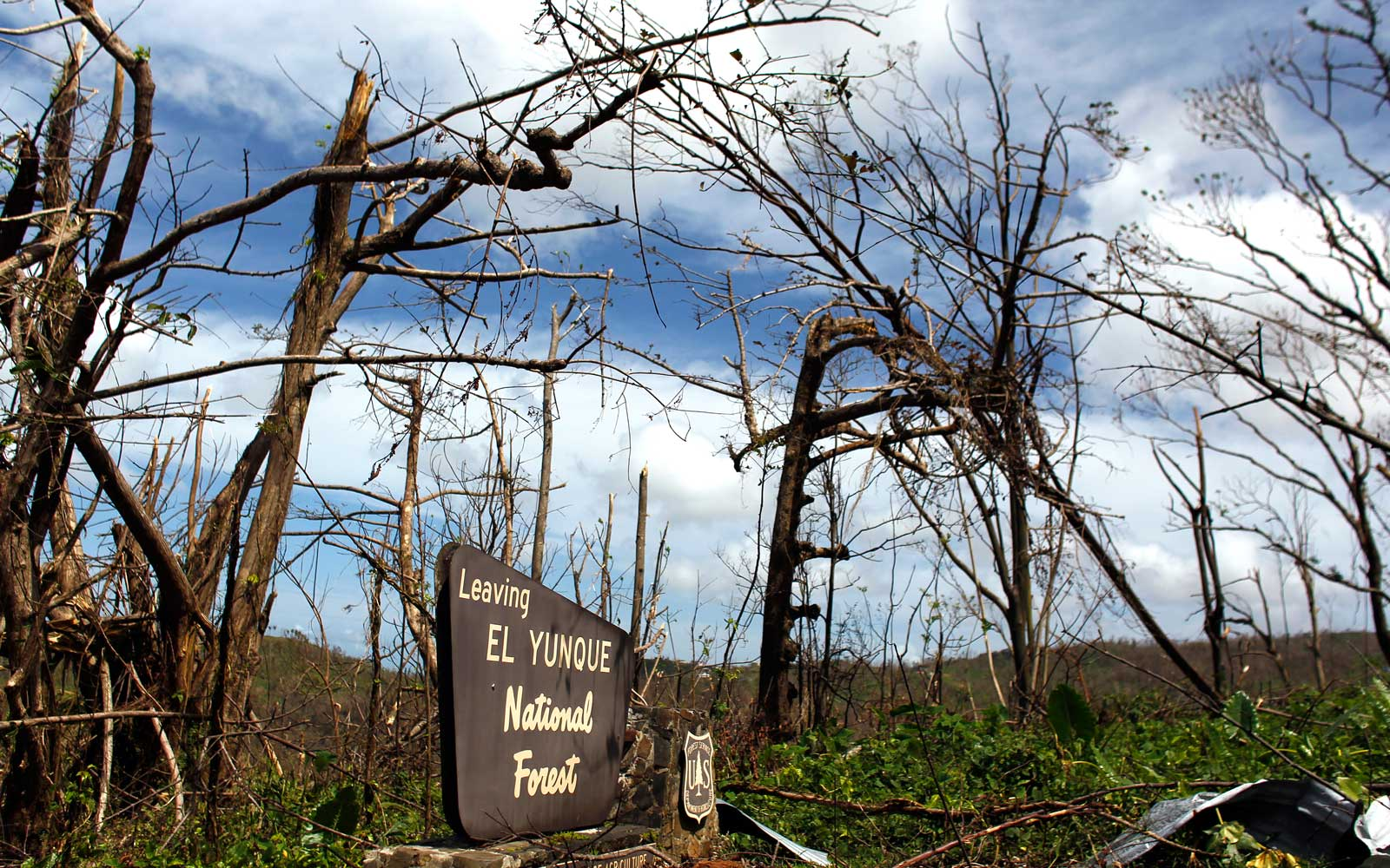 The entrance of the closed El Yunque National Forest affected by the passing of Hurricane Maria