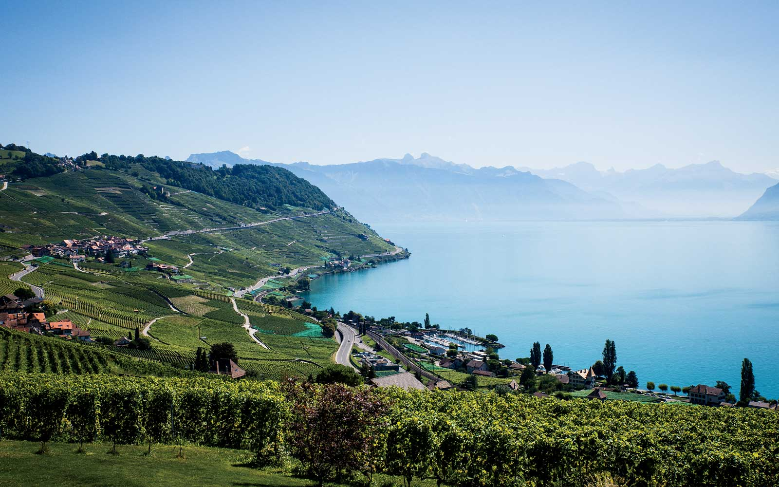 Your Next Favorite European Wine Region