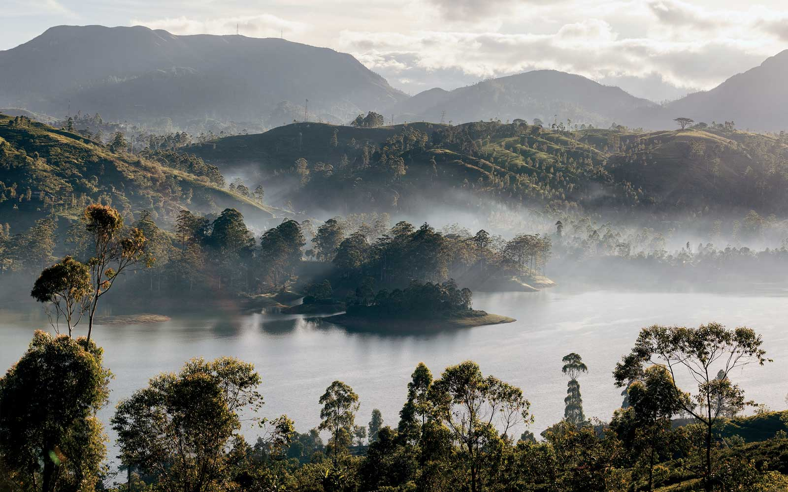 Morning at Castlereagh Reservoir, in Sri Lanka's tea country