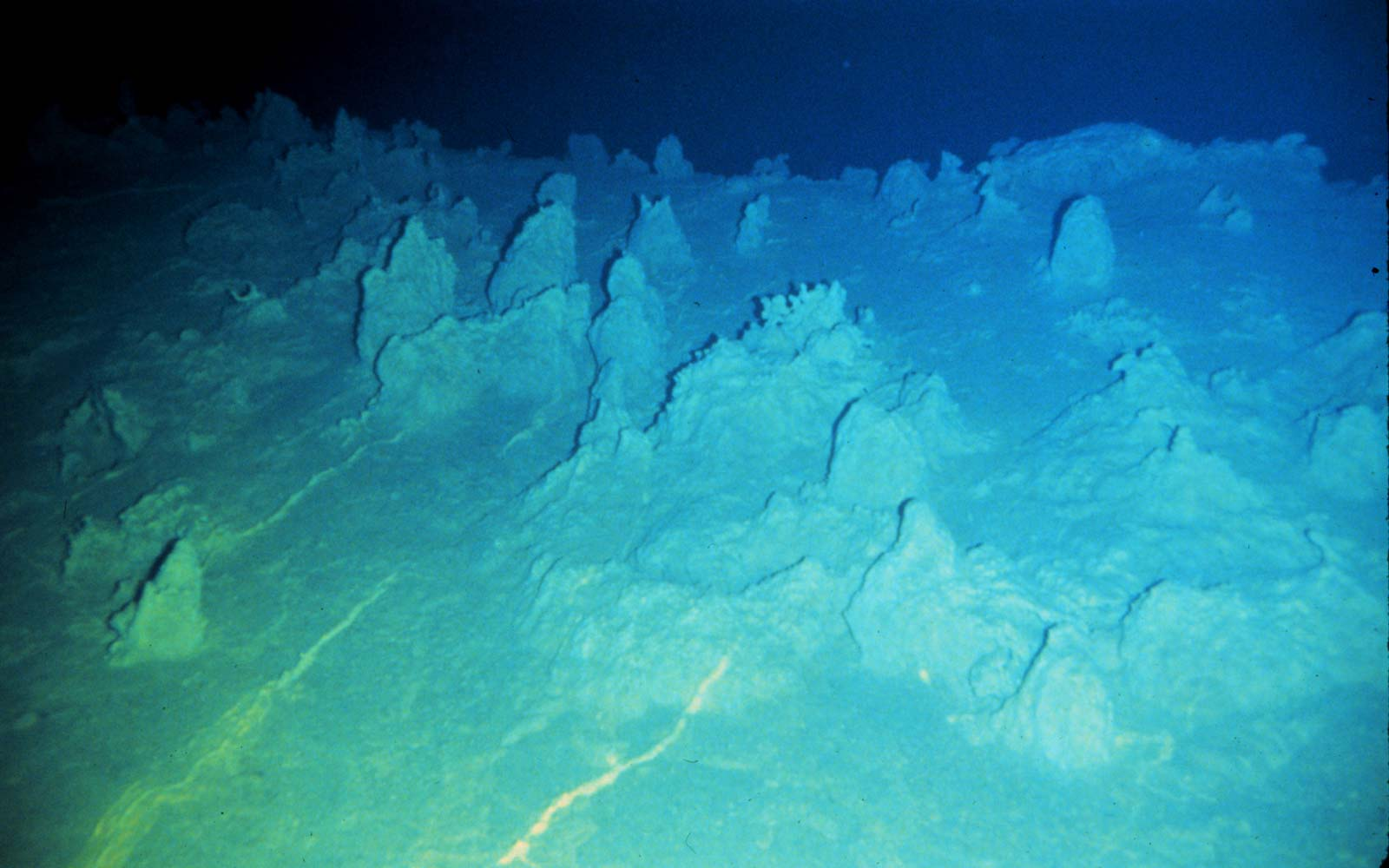 View of the underwater Loihi volcano surface in Hawaii