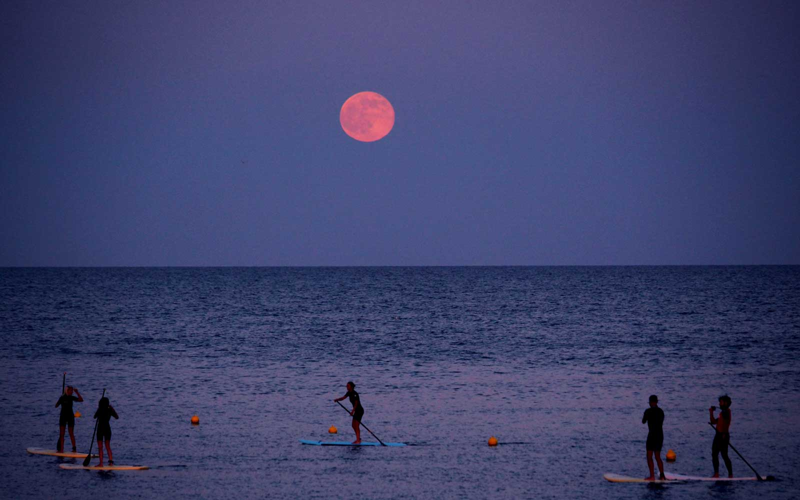 Standup paddleboarders under the strawberry moon at Barceloneta beach