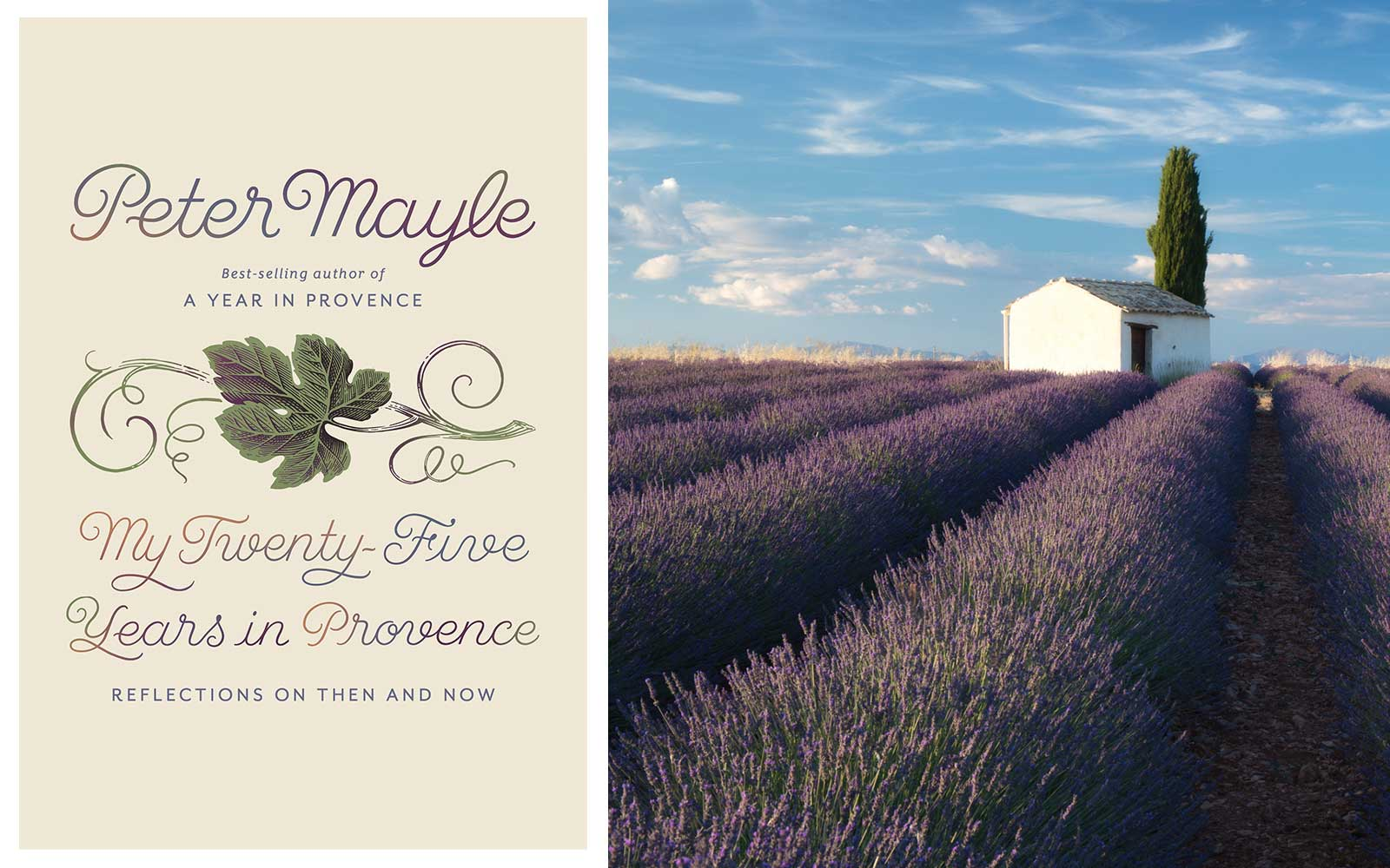 'A Year in Provence' Author's Final Book Is Your Passport to the South of France