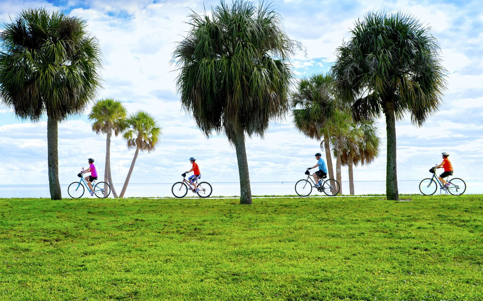 Bicycling along Tampa Bay in one of the waterfront parks in Saint Petersburg, Florida.
