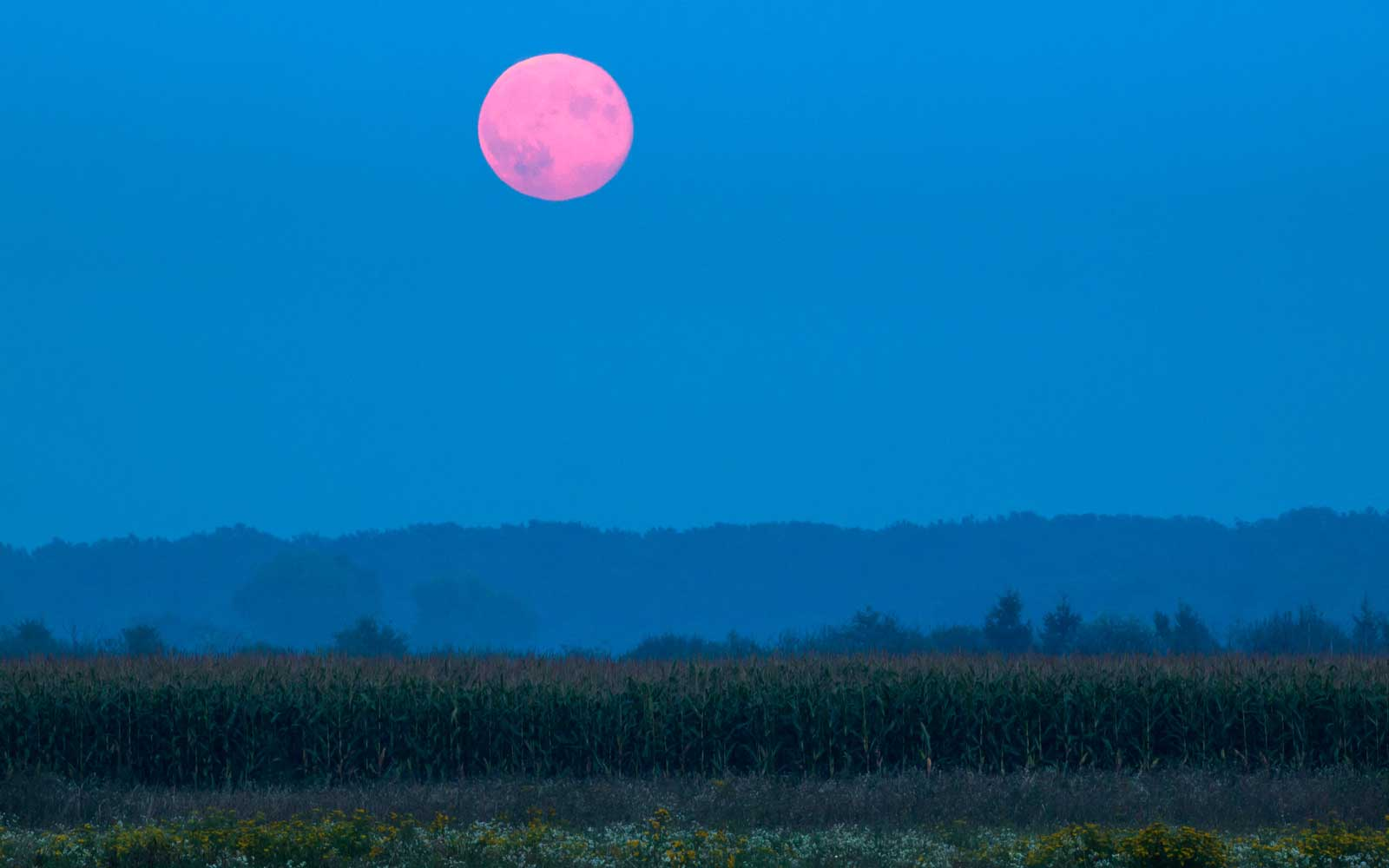 The Best Time to See September's Full Harvest Moon