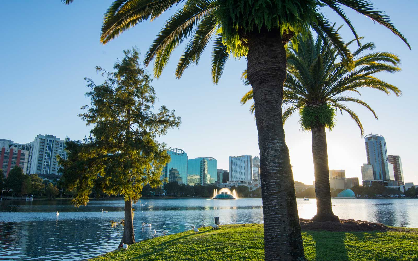 Orlando Florida Lake Eola skyline and fountain with water and palms