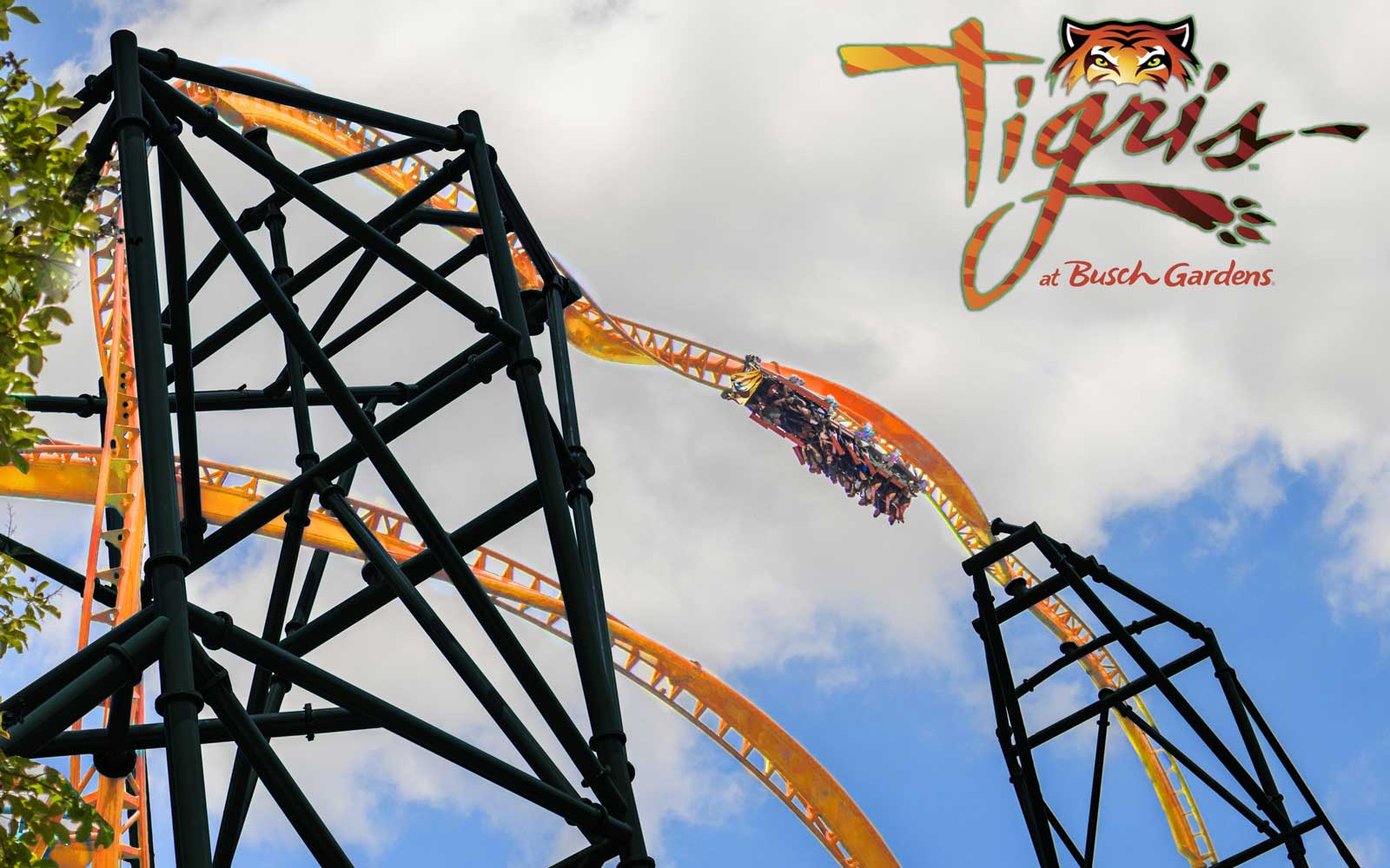 Florida 39 s tallest launch roller coaster will fling riders - Busch gardens tampa roller coasters ...