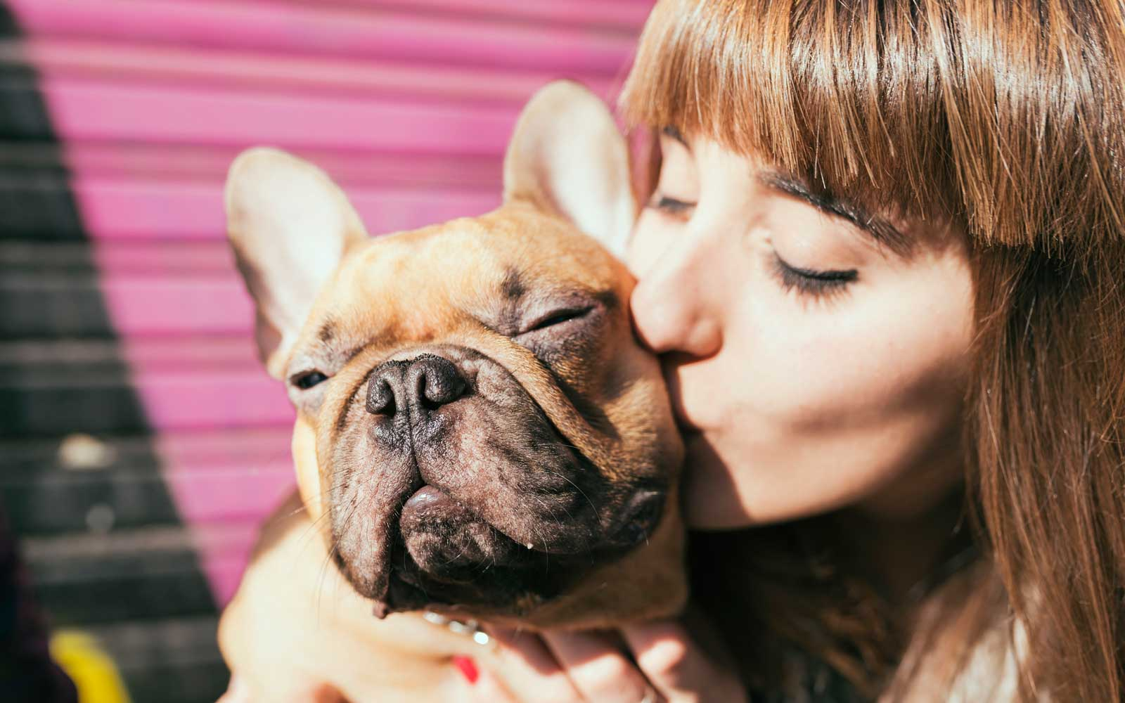 Humans Love Dogs More Than Other Humans, Study Confirms