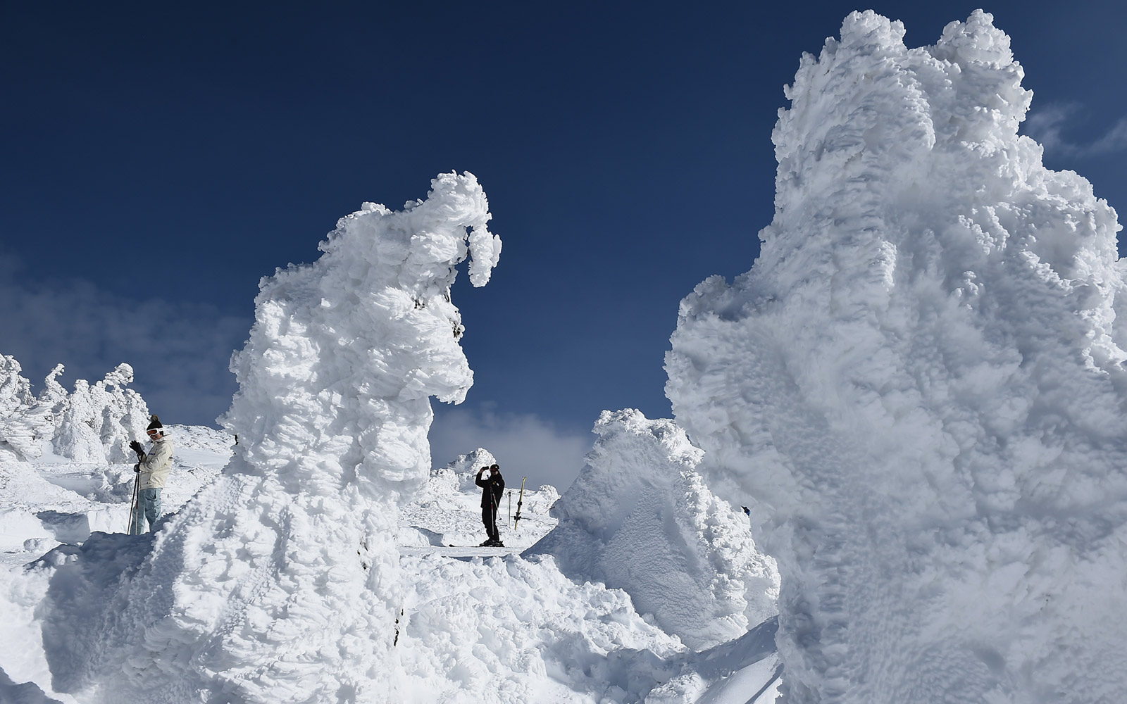 Snow monsters at Zao Ski Resort in Japan