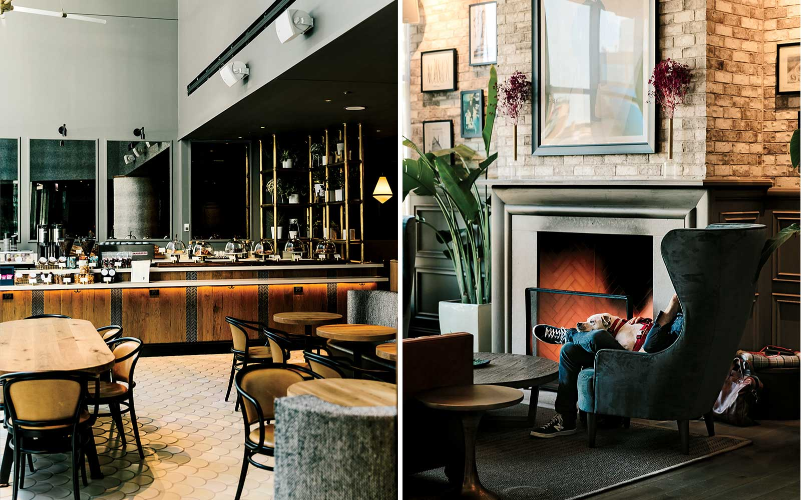 The Best New Chicago Hotels