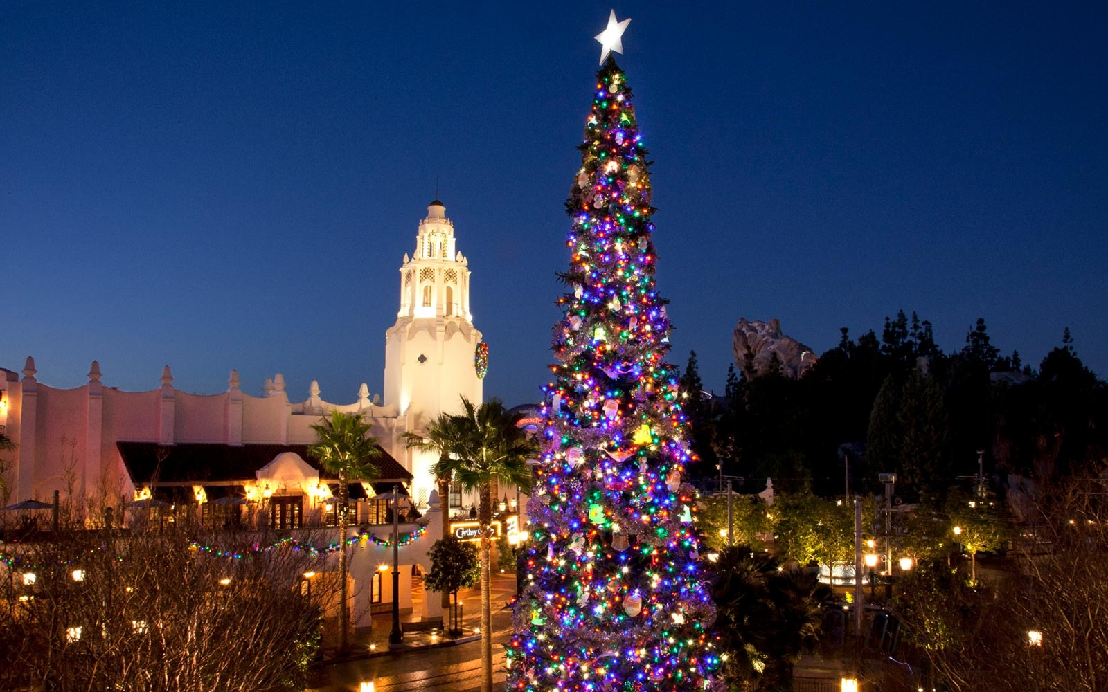 Christmas Tree Lights at Disneyland Resort