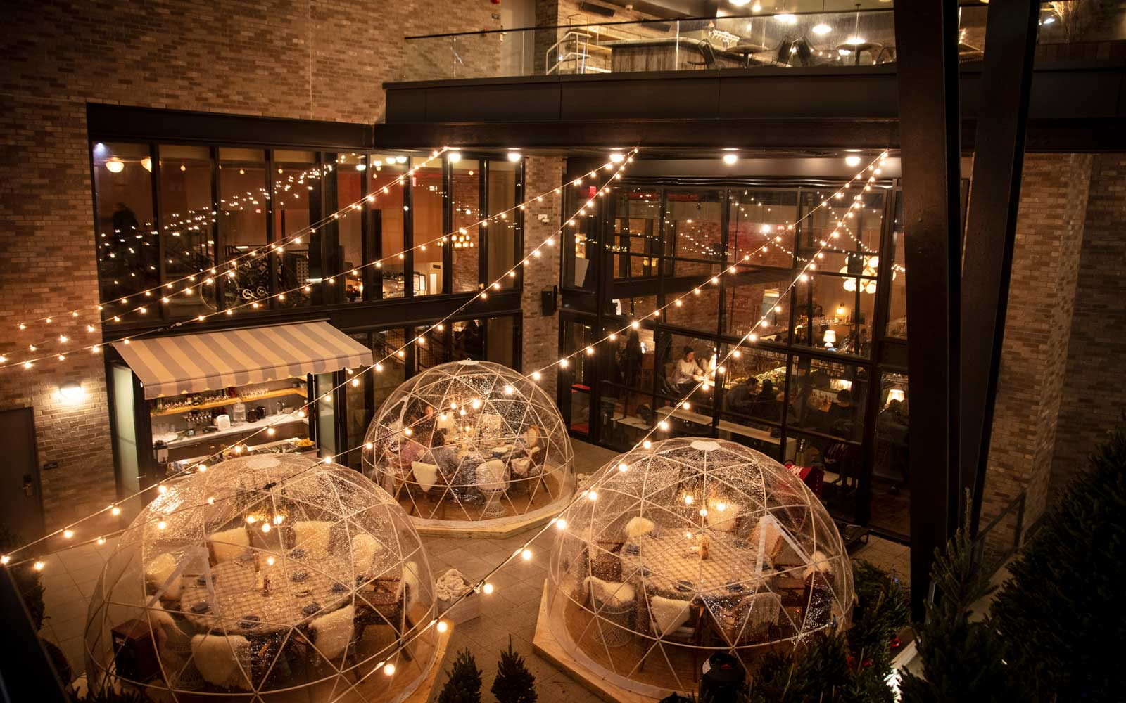 You Can Sip Cocktails in an Igloo Surrounded by Christmas Trees at This Brooklyn Hotel