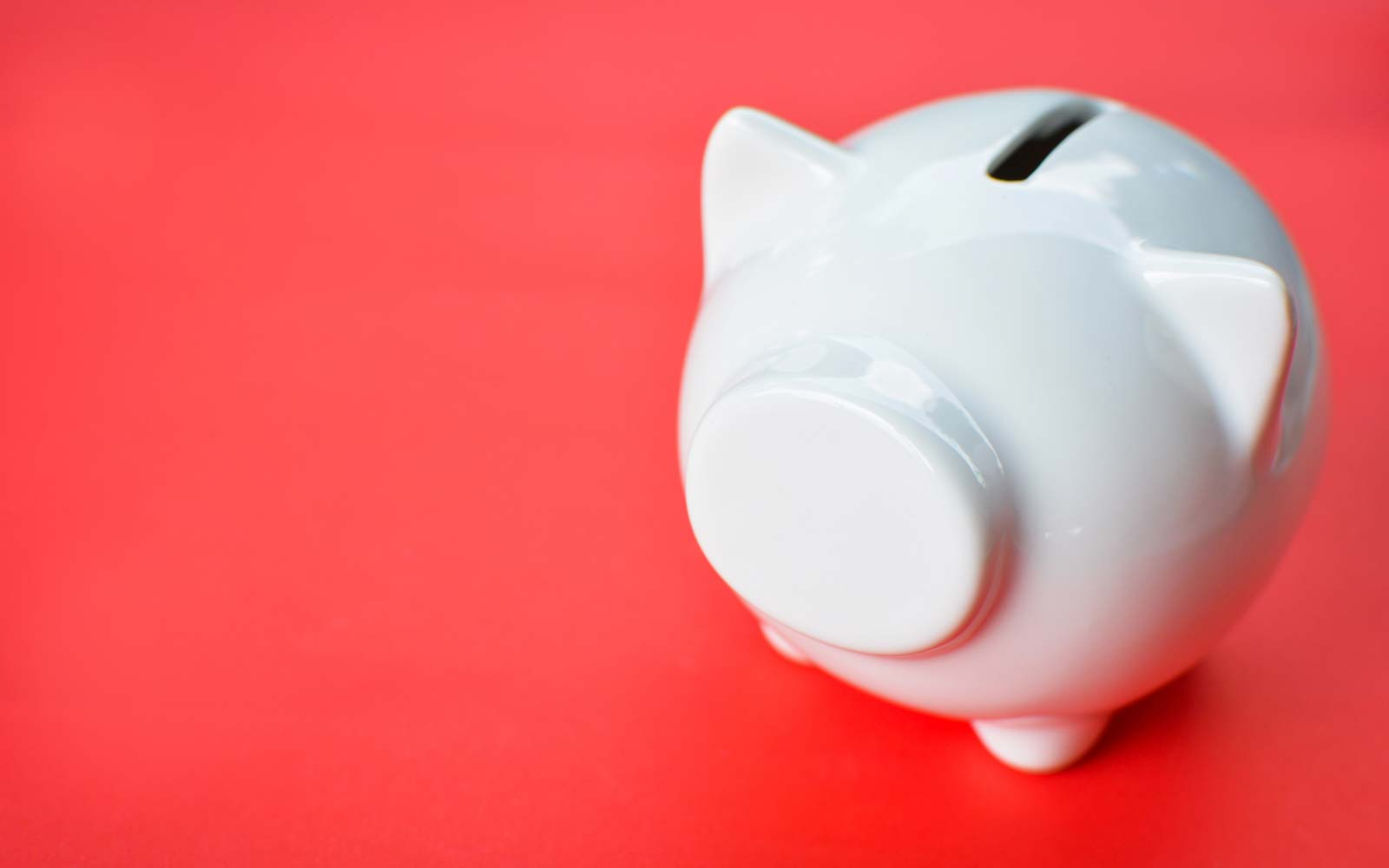 Close Up Of Piggy Bank On Red Background