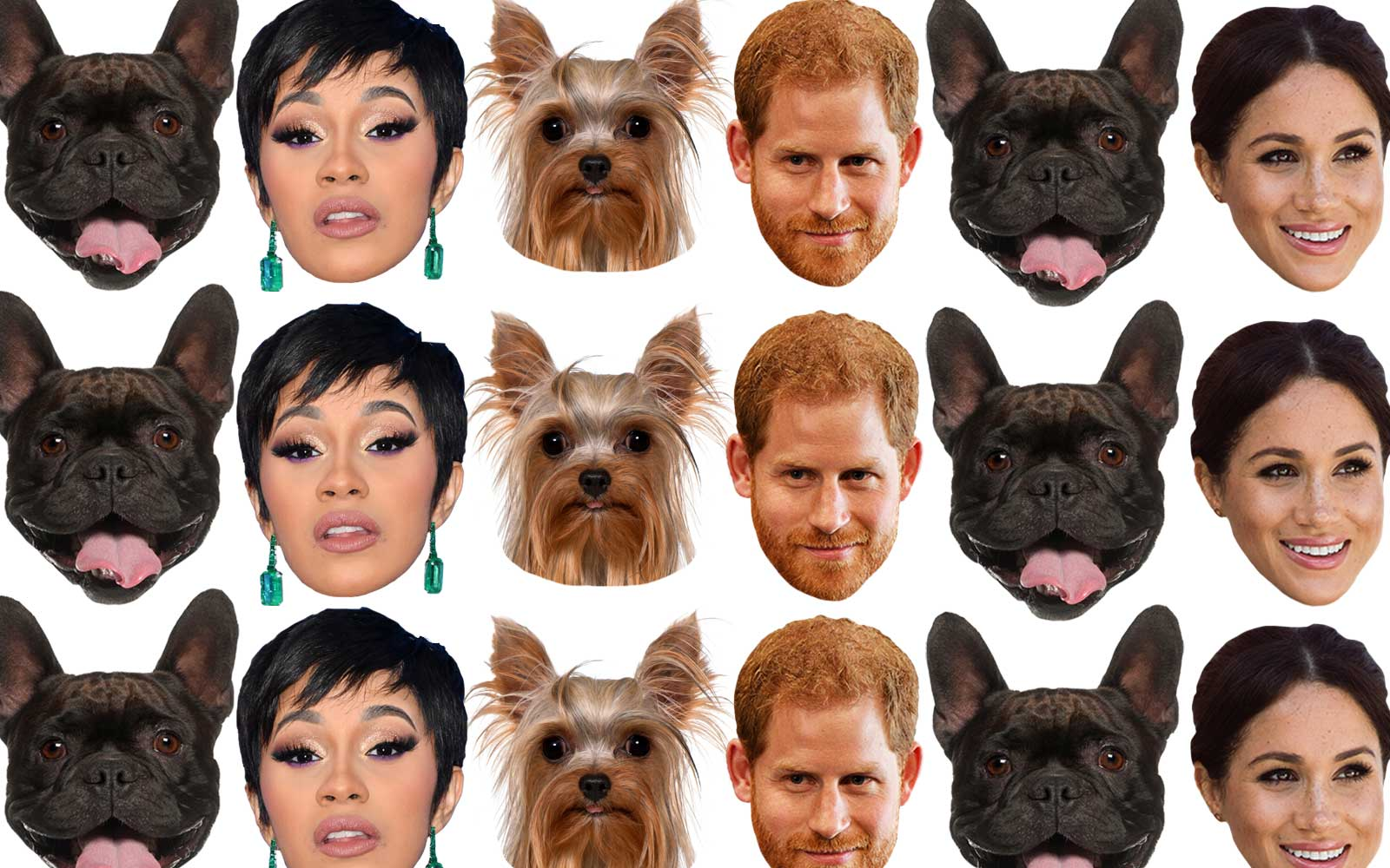 The Top Pets Names of 2018: People Are Naming Their Pets After Meghan and Harry, Cardi B, and Childish Gambino