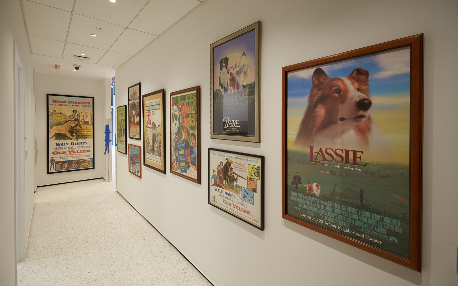 Movie Posters at the Museum of the Dog