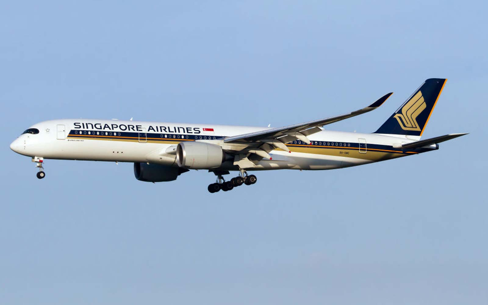 A Bird Flew Business Class From Singapore to London — and No One Noticed for 12 Hours