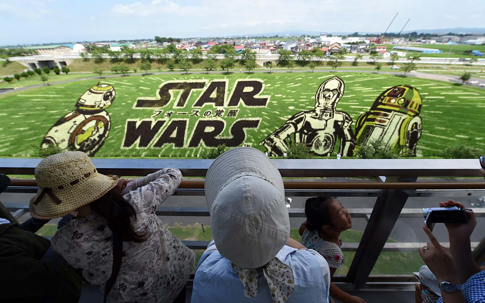 Visitors look at the Star Wars rice paddy with film characters, BB8, C-3PO and R2-D2 in Inakadate village in Aomori prefecture