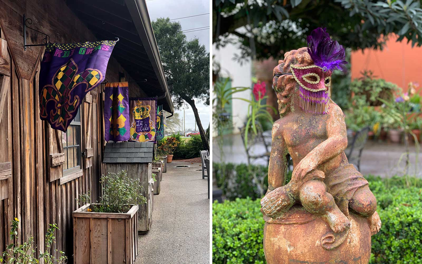 Oak Alley and Hromas House, in Louisiana's Plantation Country, decorated for Mardi Gras