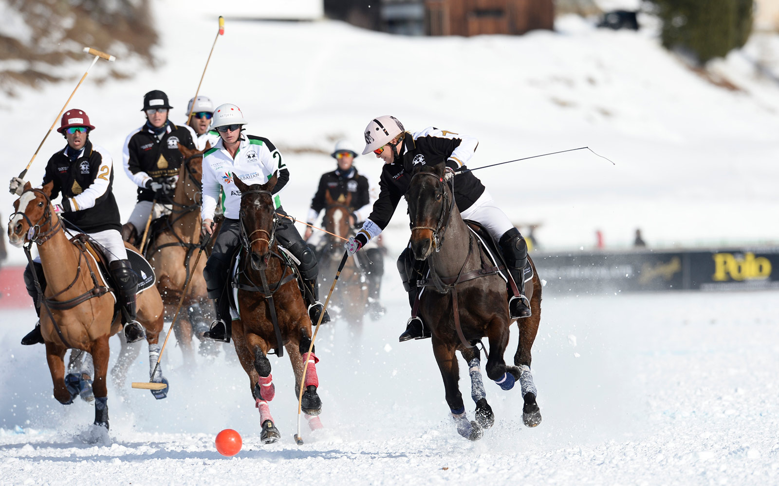 Snow Polo is a Thing — And I Went to the World Cup for It