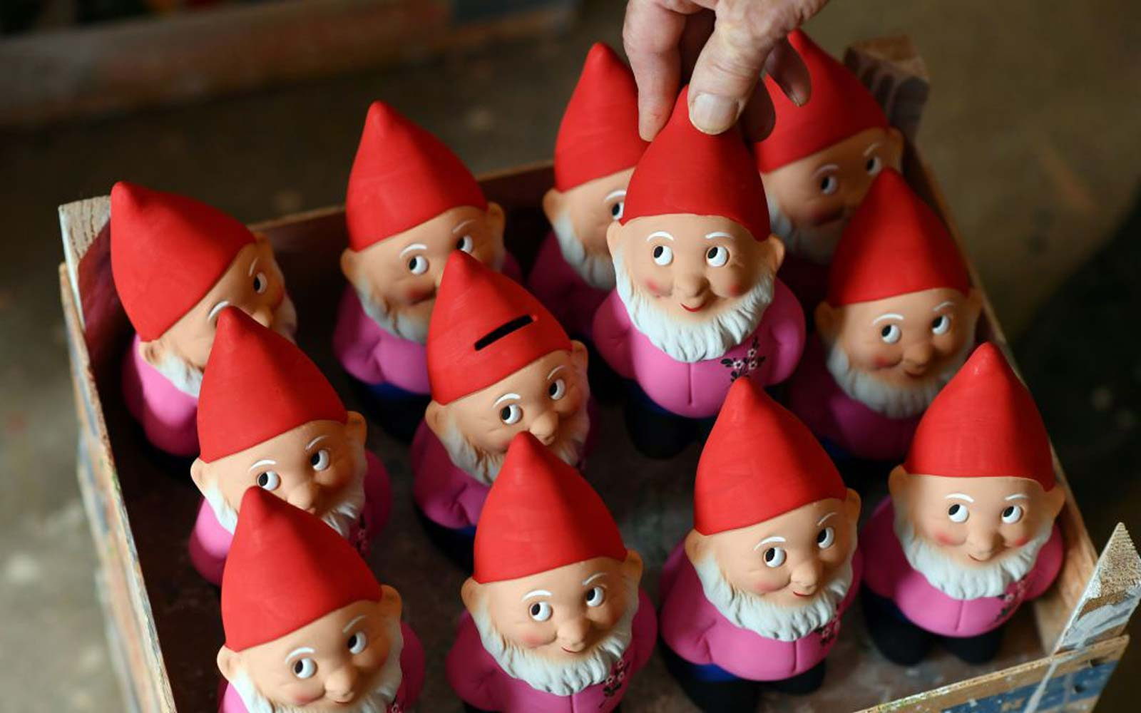 Garden gnomes are pictured at the  Gartenzwergmanufaktur Philipp Griebel  garden gnome manufacturer in Graefenroda near Ilmenau, central Germany