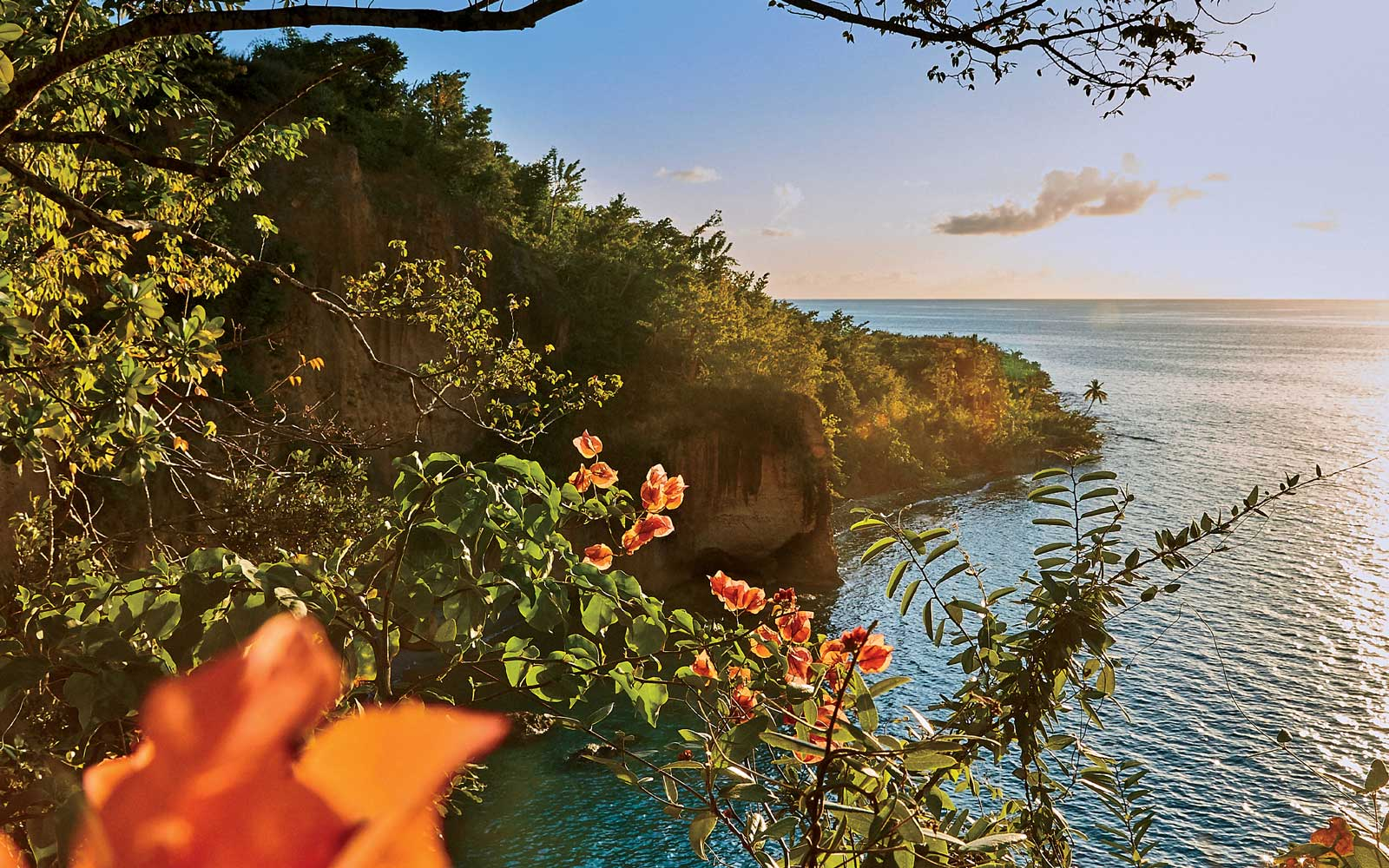 View from Secret Bay, in Dominica