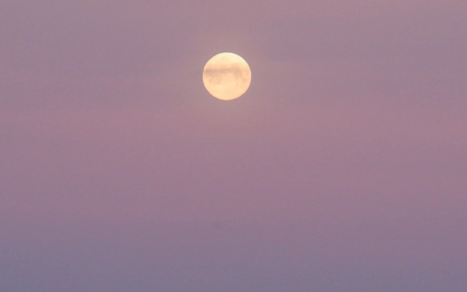 The Pink Moon on April 19 won't be pink. Here's why