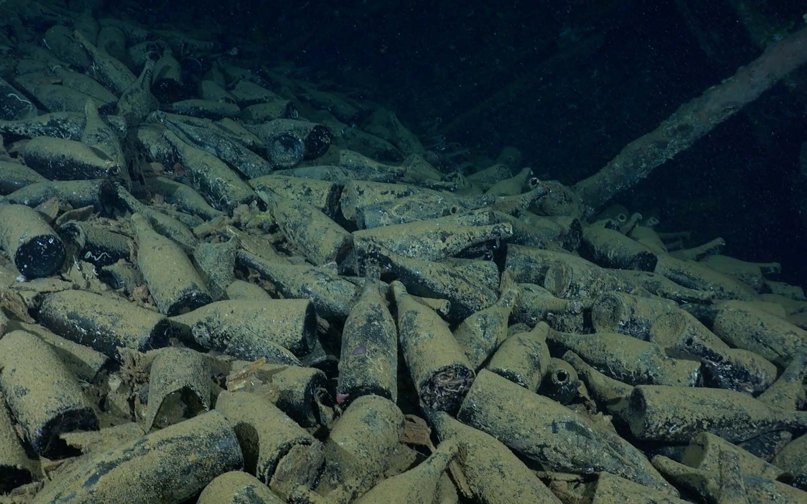 This Expedition Is Seeking Volunteers To Help Recover Vintage Wine From a Sunken Ship