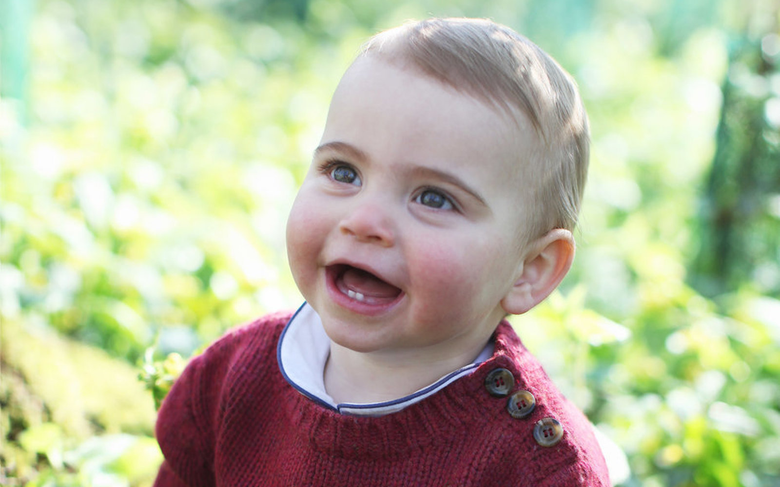 Kate Middleton's photo of son Prince Louis for his first birthday