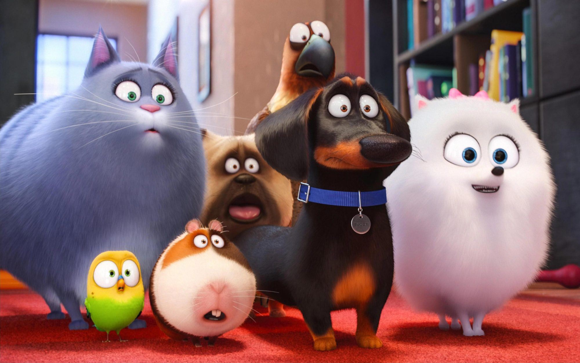 'The Secret Life of Pets' Is Getting a Theme Park Ride at Universal Hollywood