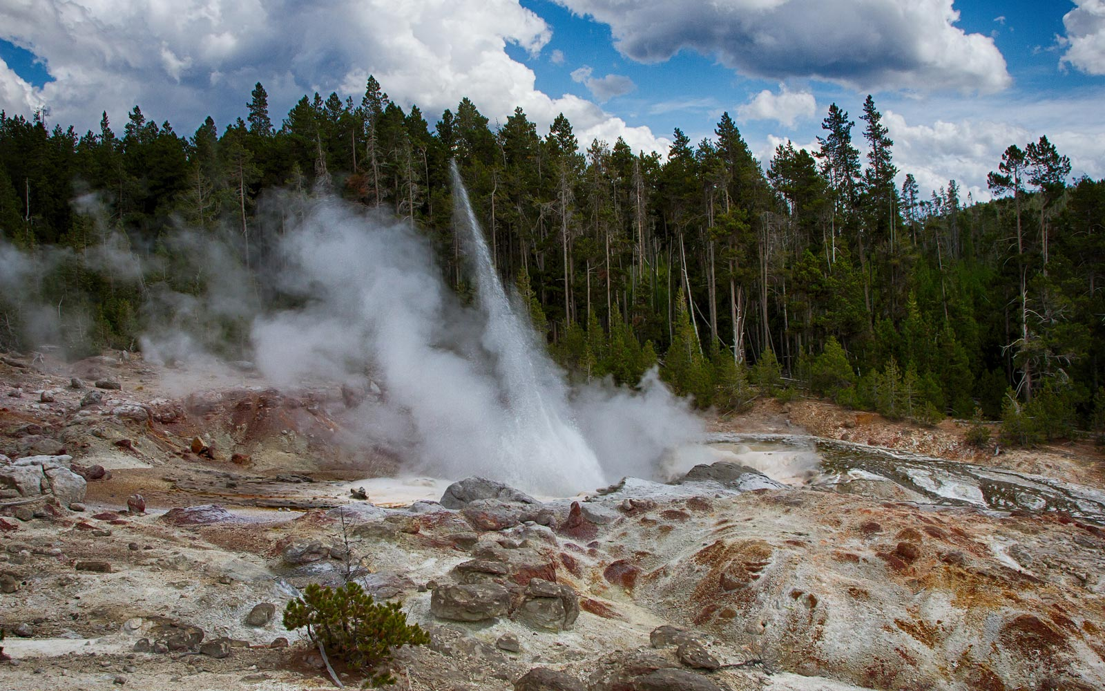 Yellowstone's Steamboat Geyser Is Extremely Active This Year — Here's How to See It Erupt