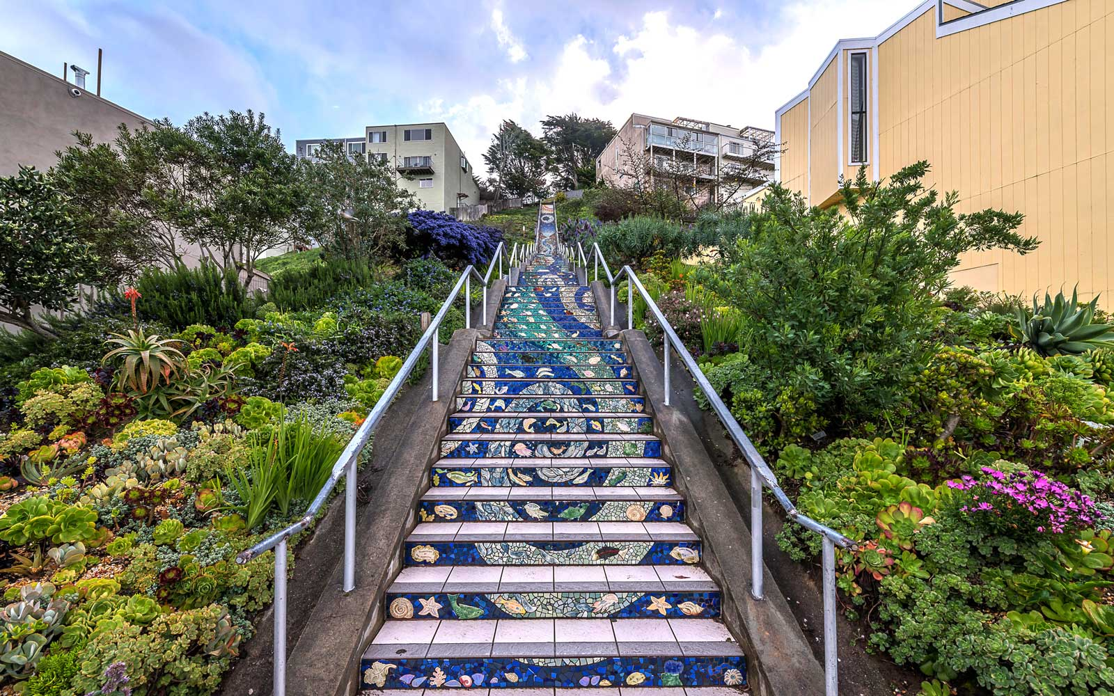 The Mosaic Stairs of San Francisco