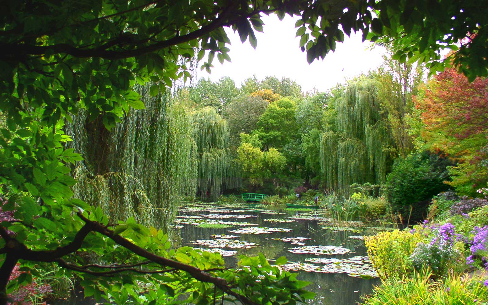 Monet's garden at Giverny, France.