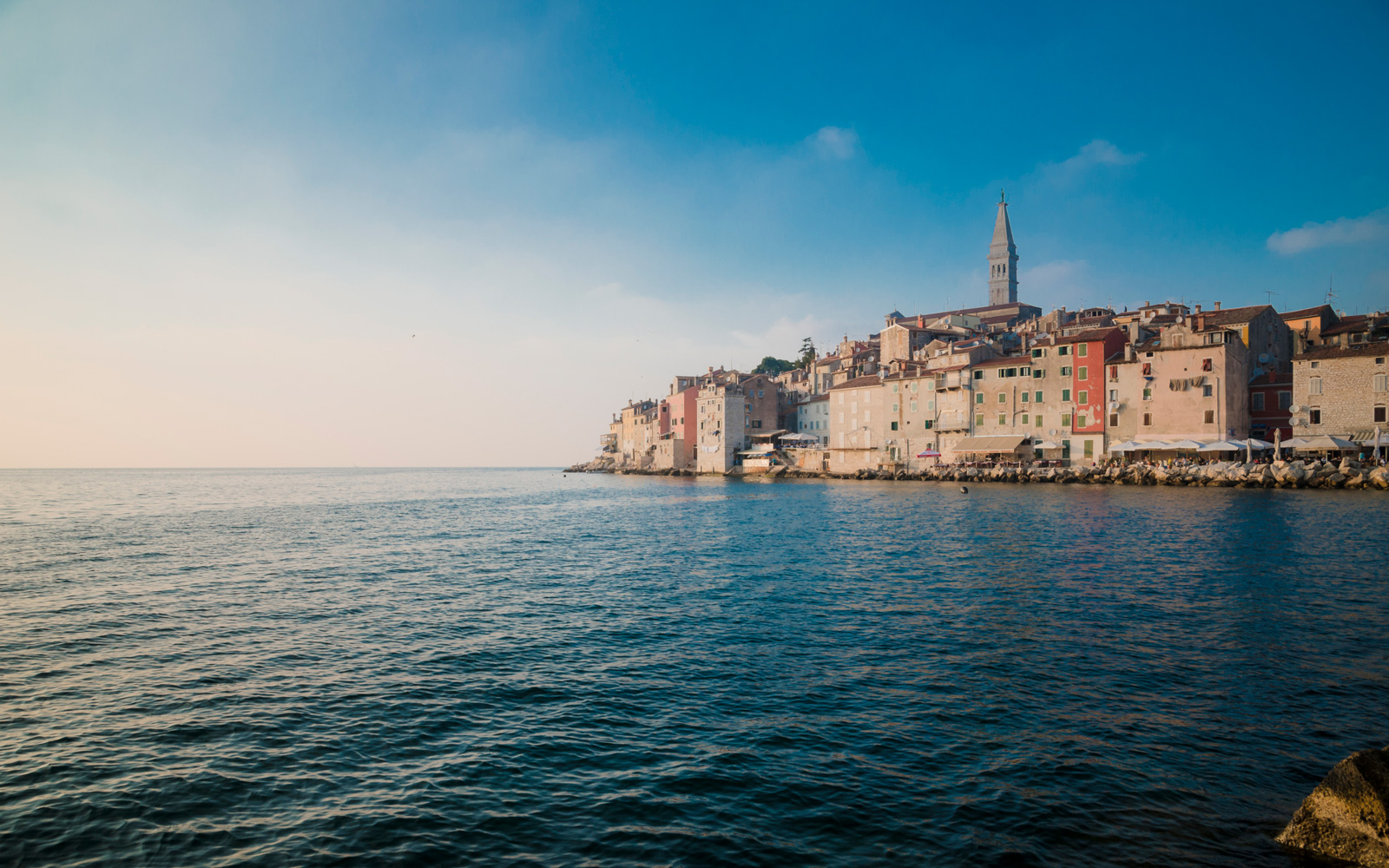 You Could Get a Scholarship to Cruise Croatia and Help Dolphins This Summer