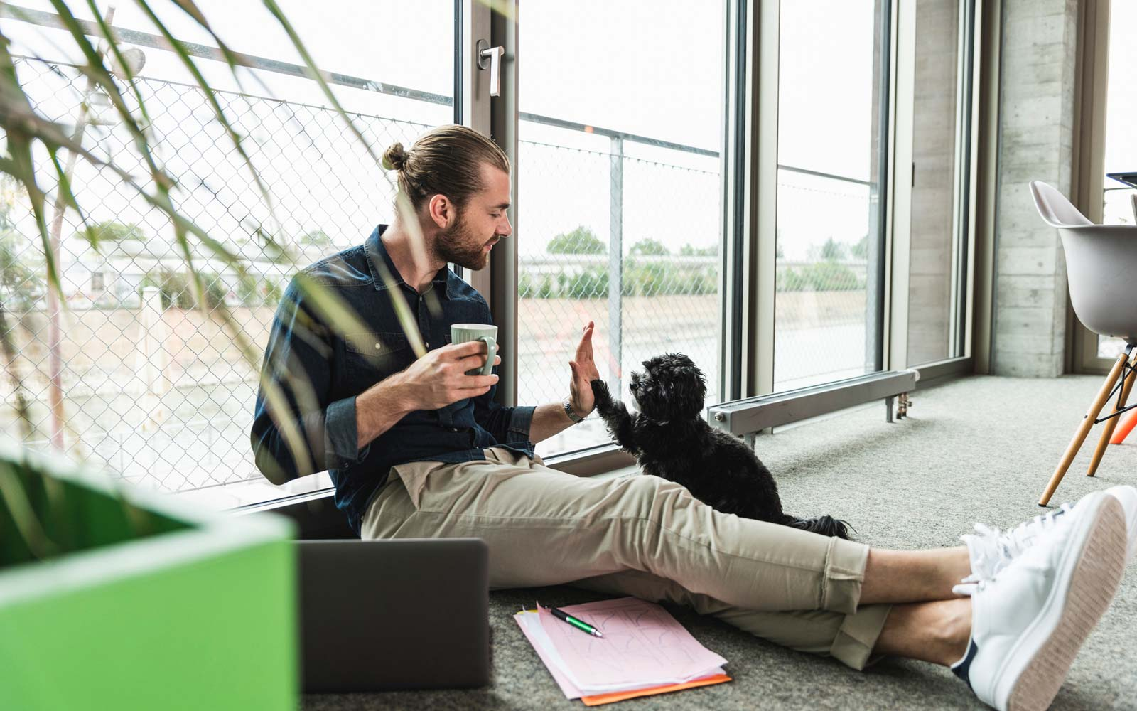 10 Companies in the U.S. That Let You Bring Your Dog to Work