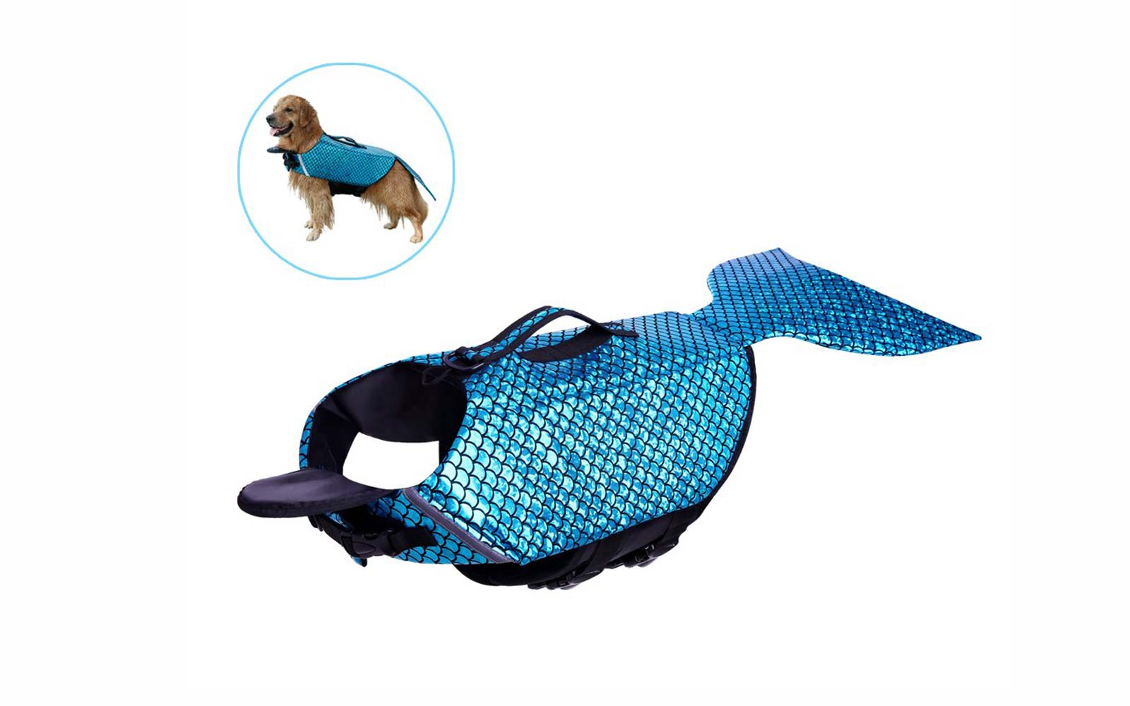 These Mermaid Life Jackets On Amazon Will Turn Your Dog into a Fabulous, Fearless Swimmer
