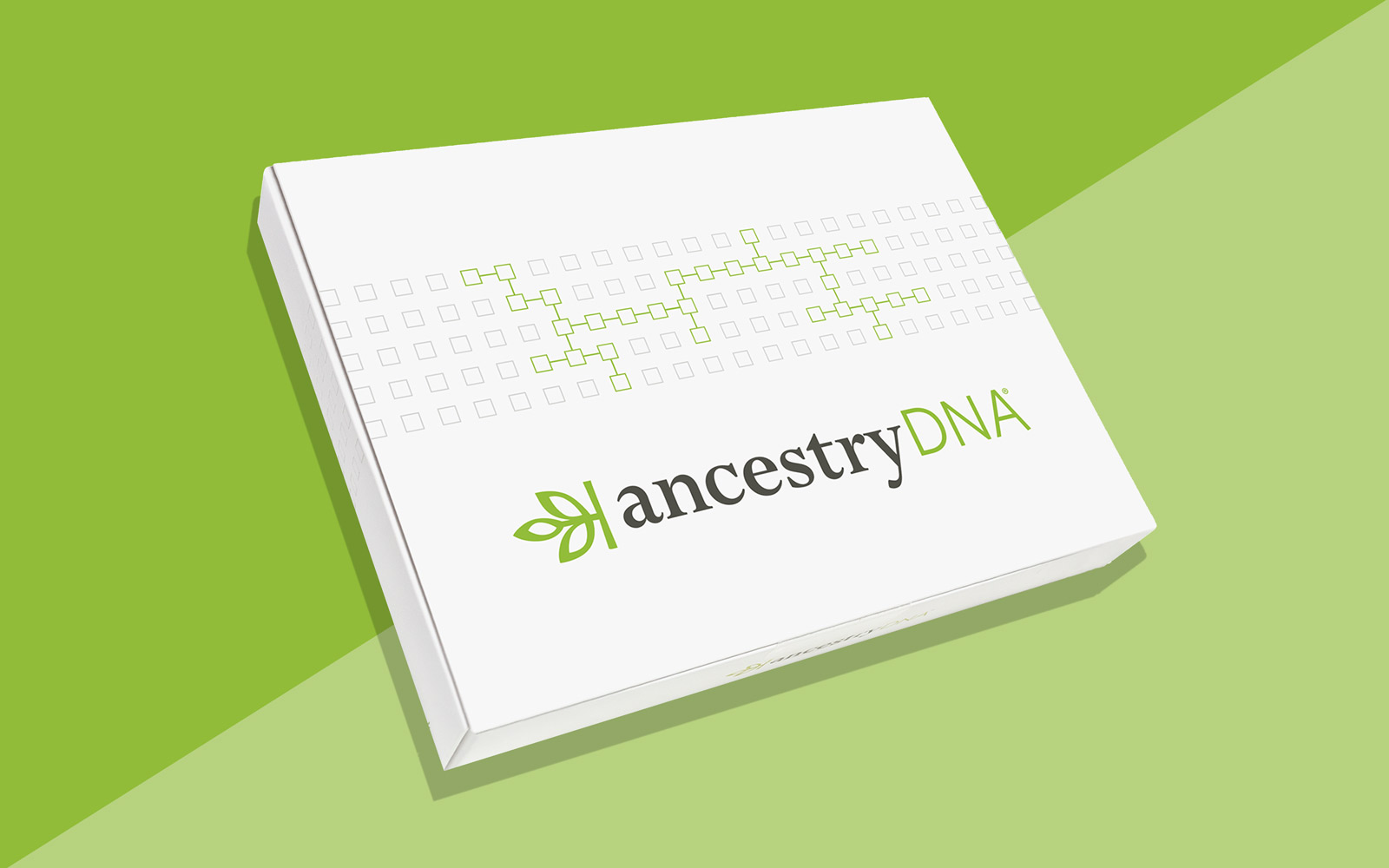 AncestryDNA's Best-selling Test Kit Is on Sale at Amazon