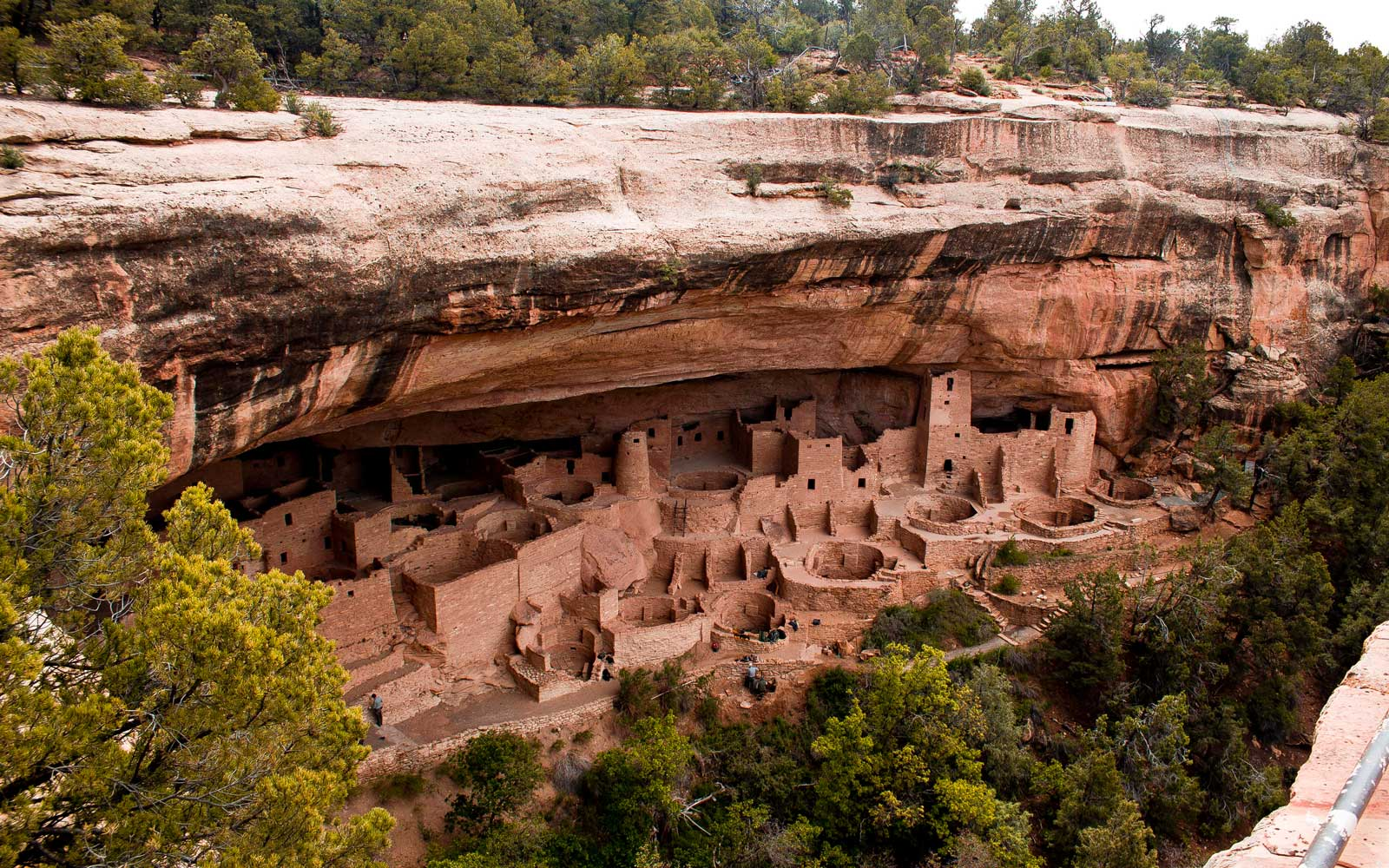 Tour the largest cliff dwelling in North America, Cliff Palace, at Mesa Verde National Park.