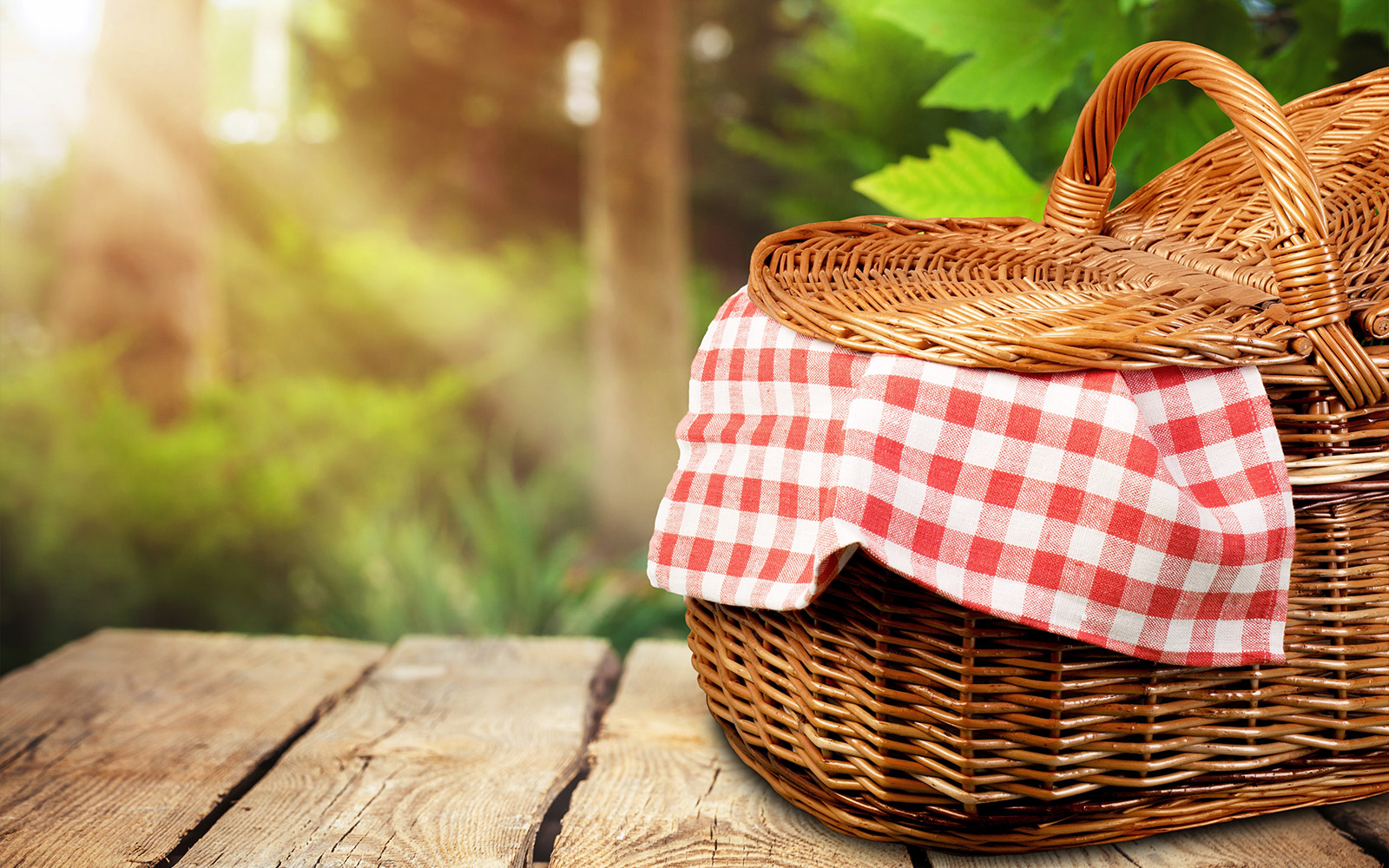 7 Perfect Picnic Baskets to Bring Along for Summer Adventures