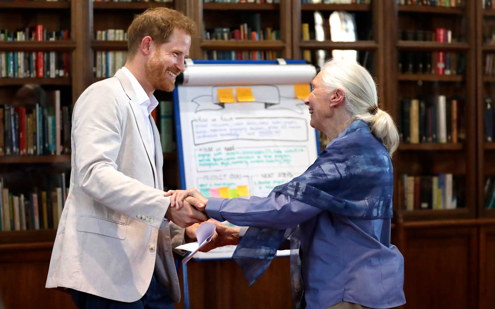 Prince Harry Happily Broke Royal Protocol by Performing 'Chimp Greeting' With Jane Goodall