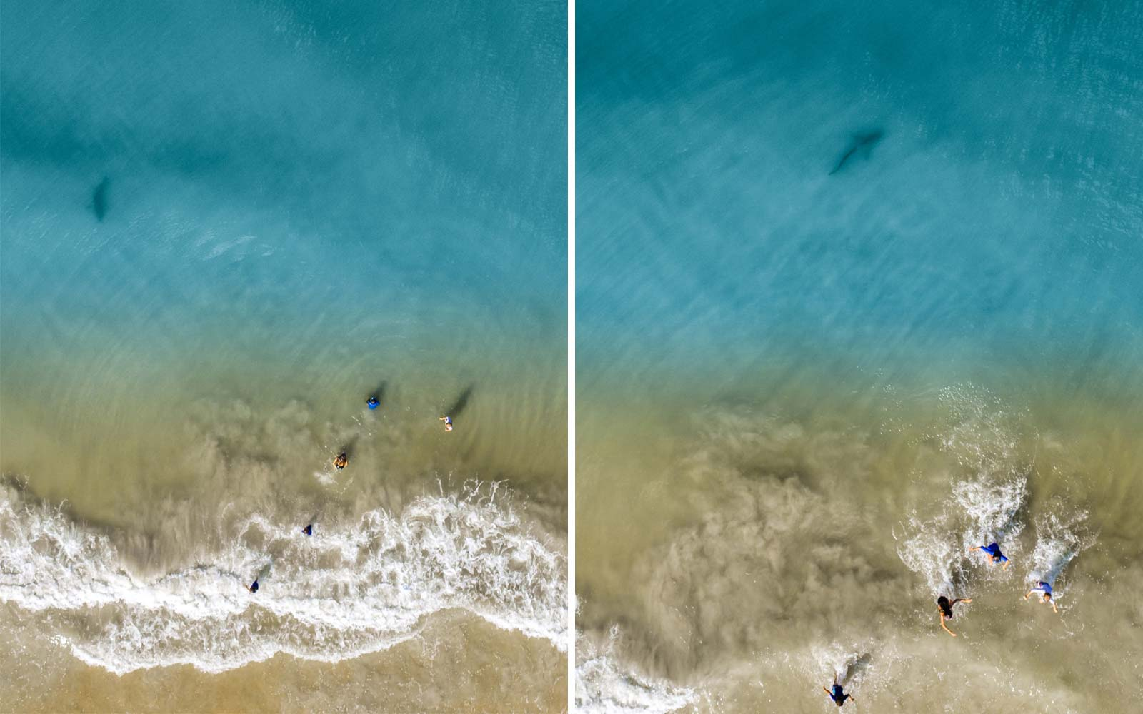 Man Captures Chilling Drone Images of Shark Lurking Near Children Swimming in the Ocean