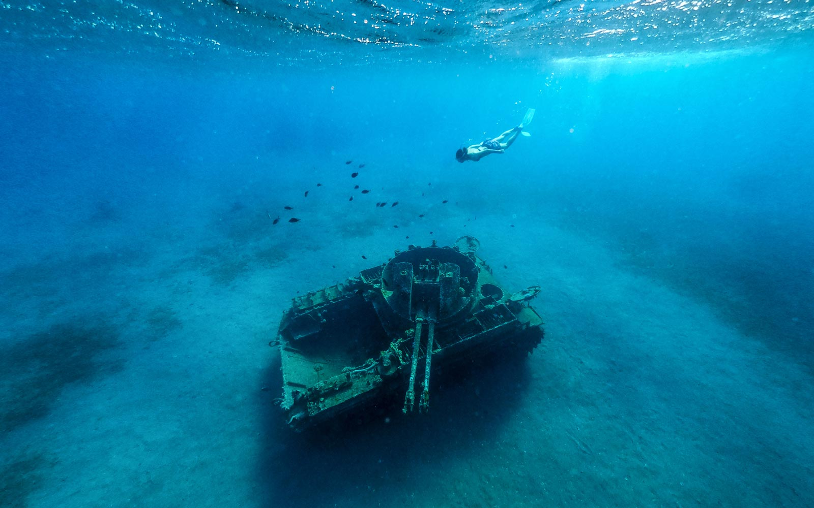 Jordan Submerged a Bunch of Military Tanks on Purpose to Create This Insane New Dive Site
