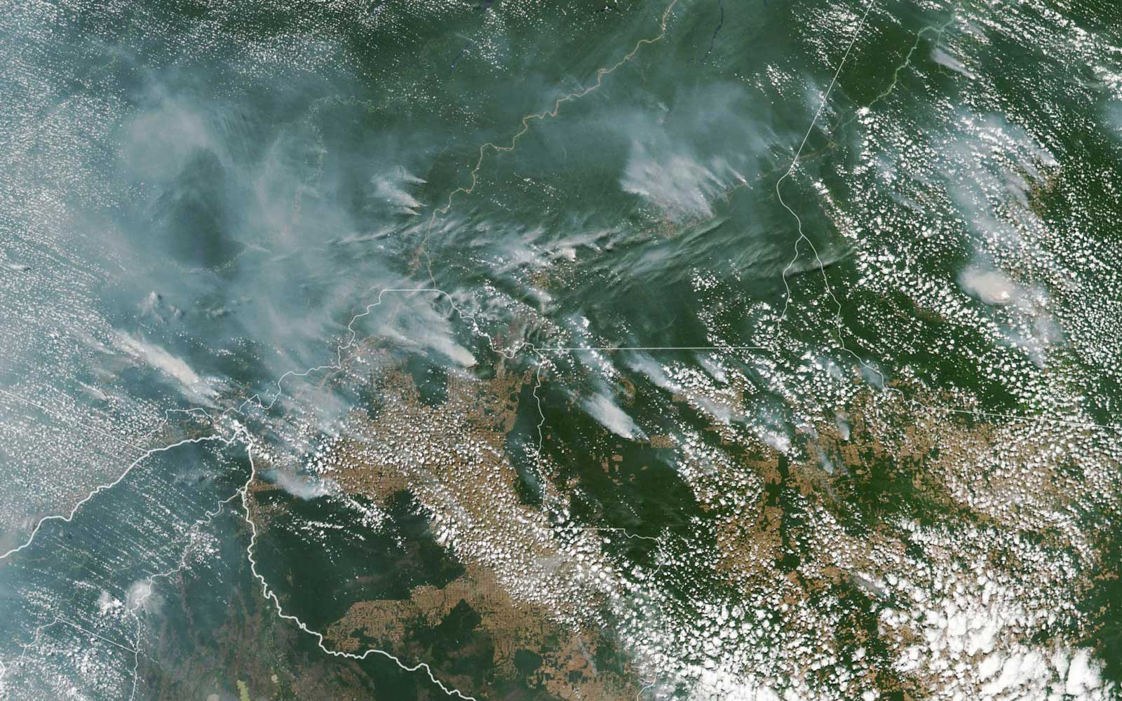 Several fires burning in the Brazilian states of Amazonas