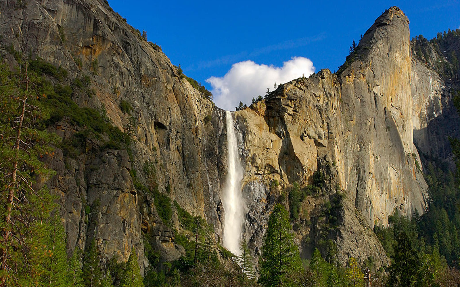 21-year-old Tourist Dies After Slipping and Falling at Yosemite National Park Waterfall
