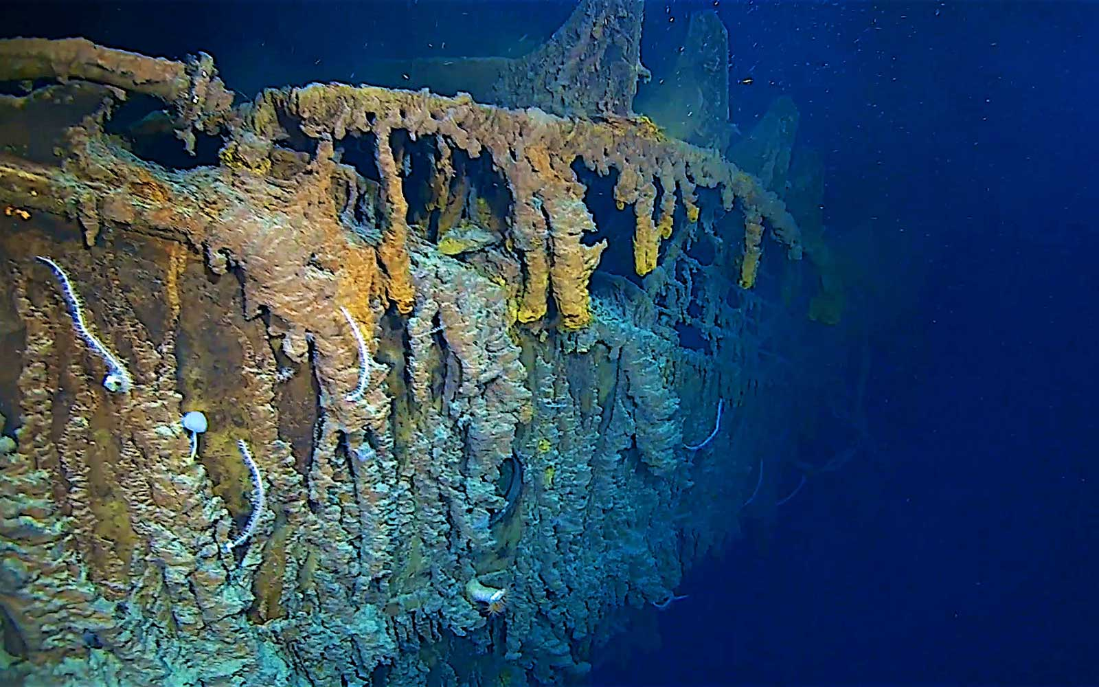 Divers Revisited the Titanic for the First Time in 14 Years — and What They Found Was 'Shocking'